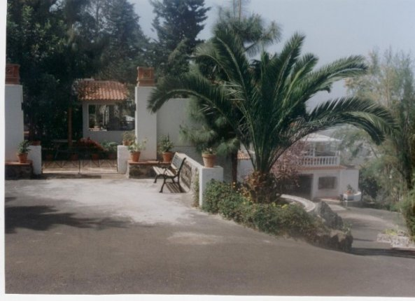 Chalet in Zona medianias  -  Finca with two houses in perfect conditions, huge garden.