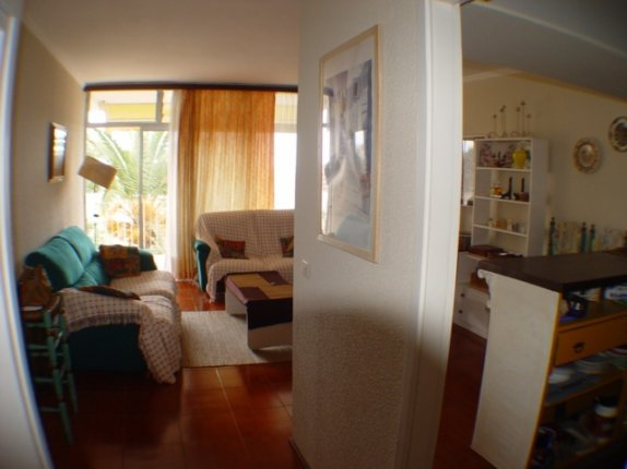 Appartement in Puerto de la Cruz  -  Grossz�giges Appartment mit sch�nem Blick, ruhige Lage, komplett renoviert.