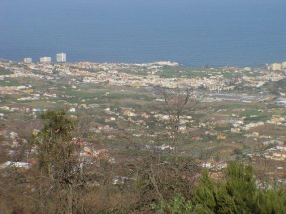 Finca in La Orotava  -  Grosszügige Finca mit Tieren und Obstbäume.