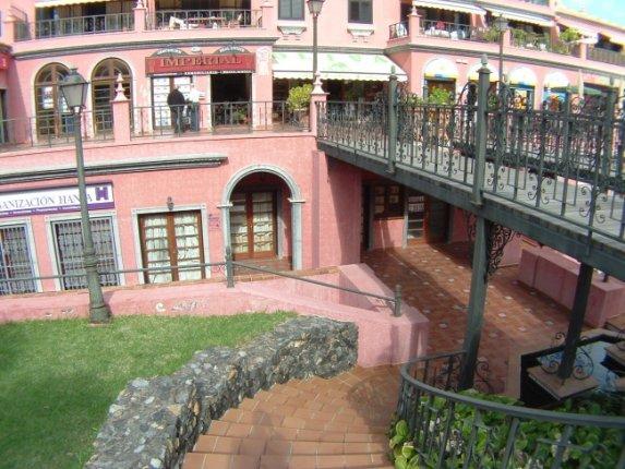 Geschäftslokal in Puerto dela Cruz  -  Geschäftslokal gegenüber des Botanischen Garten