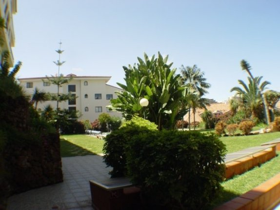 Appartement in Puerto de la Cruz  -  H�bsches, ruhiges und zentral gelegenes Appartment in Puerto de la Cruz.
