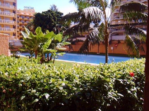 Studio in Puerto de la Cruz  -  Gemütliches Studio in zentraler Lage und in  Strandnähe, Anlage mit Pool.