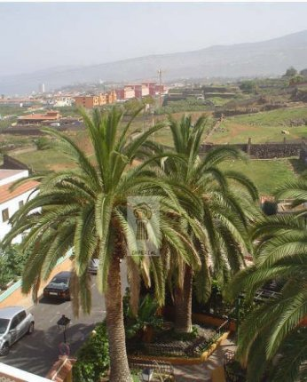 Flat in El Toscal  -  Flat in quiet area with nice views.
