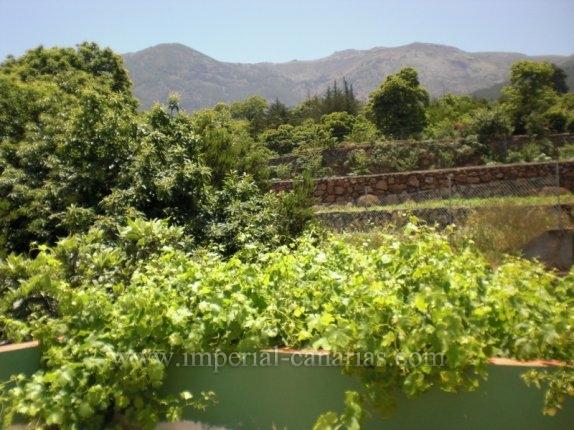 Finca in Pinolere  -  Finca mit kleinem, rustikalem und renovierungsbed�rftigem H�uschen  im Norden von La Orotava.