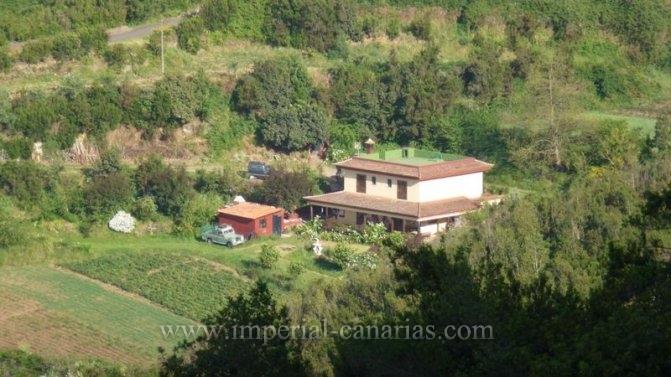 Finca in Palo Blanco  -  Finca mit Ackerland mit vielen Möglichkeiten, in ruhiger Lage von Palo Blanco, Los Realejos.