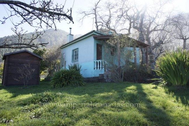Finca in Aguamansa  -  Herrliche Finca mit Haus und Fruchtbäumen in Aguamansa, nur 15 km entfernt von Puerto de la Cruz