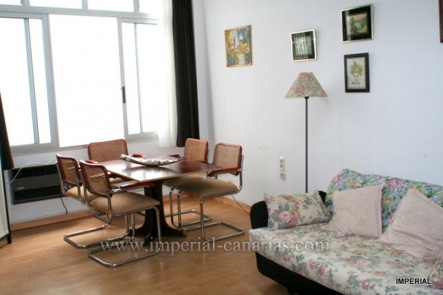 Studio in Plaza del Charco  -  Ger�umiger Studio in Plaza del Charco.