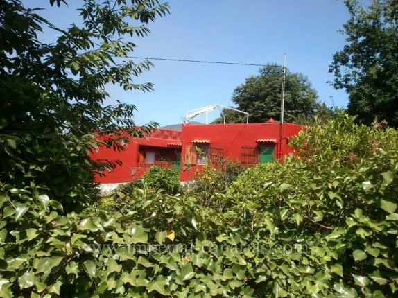 Cottage in Aguamansa  -  Nice finca with house near Aguamansa