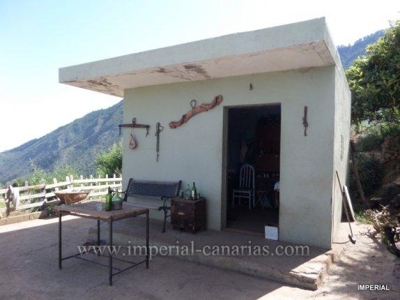 Schöne Finca mit ca. 4.000 m2 und einem Gerätehäuschen bepflanzt mit Obstbäumen und Gemüse in Pinolere.