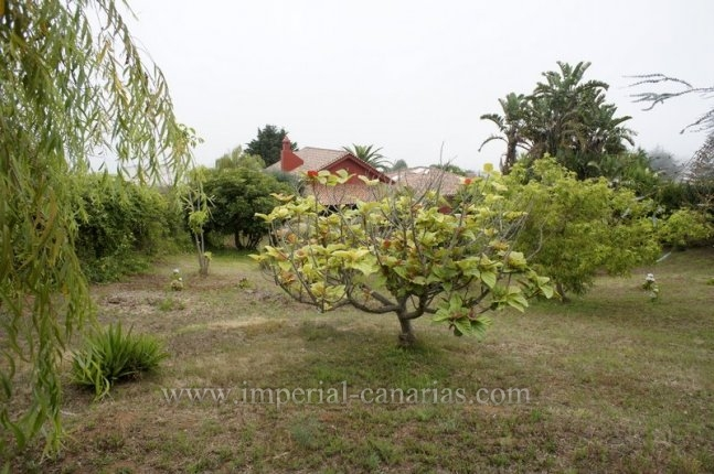 Beautiful house with big garden and finca
