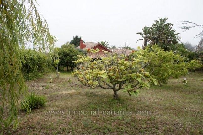 Einfamilienhaus mit grossen Garten und Finca